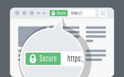 The Importance of SSL for Your Website